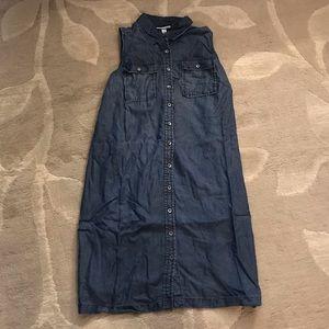 Liz Lange Maternity Jean Dress